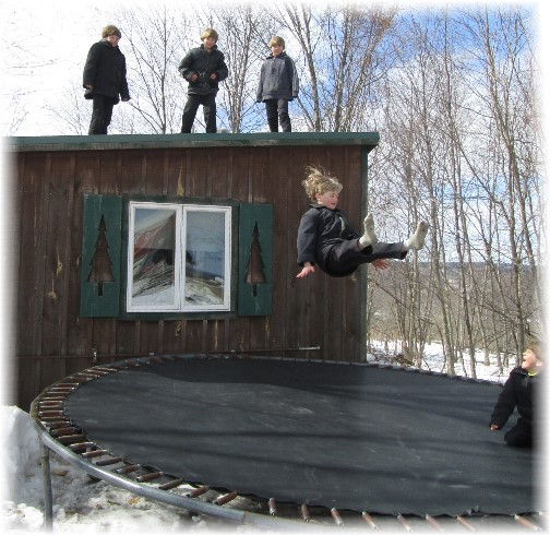 Amish boys jumping on trampoline, NY 3/23/14
