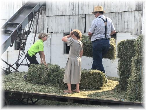 Unloading hay wagon on Old Windmill Farm 6/7/18