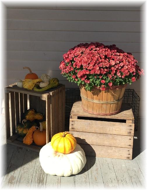Autumn decoration 10/18/17