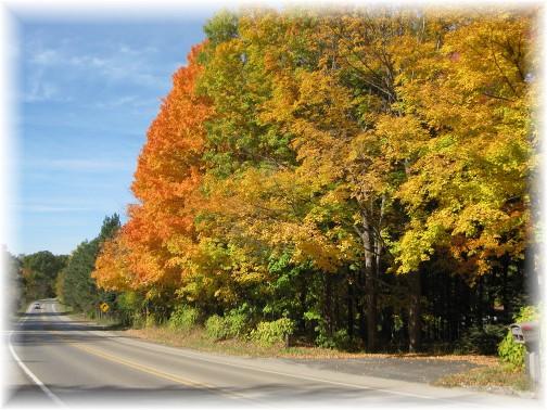 Michigan autumn 10/15 (photo by Ellen Luke)