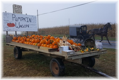 Pumpkin wagon near Paradise, PA 9/28/16 (Click to enlarge)
