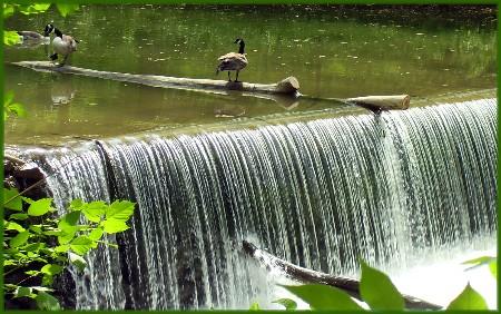 Conestoga River in Lancaster PA