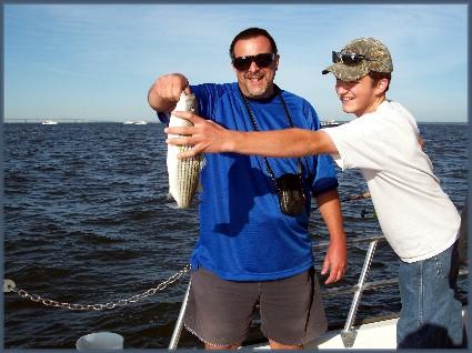 Striped bass from Chesapeake Bay