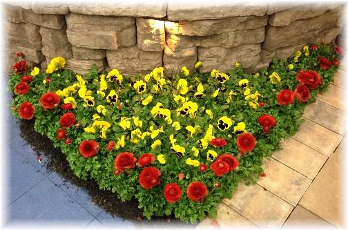 Lancaster homeshow flowers