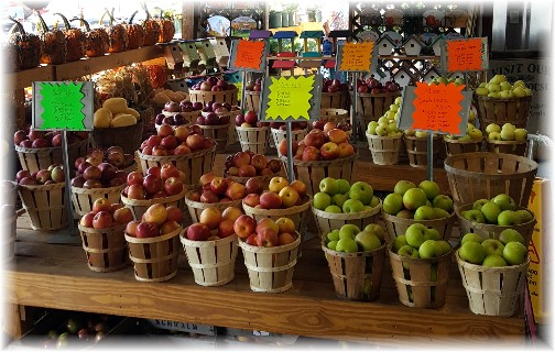 Village Farm Market apples 9/21/17
