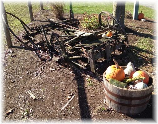 Eastland Alpaca Farm decrepit wagon 11/15/15