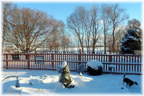 Backyard snow 1/3/14