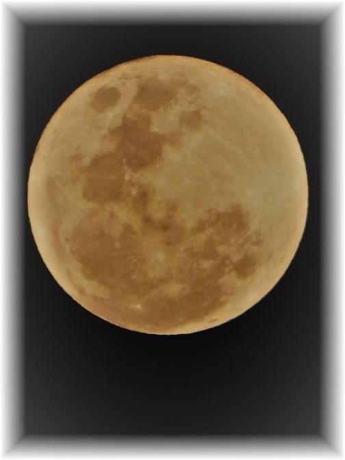 Moon 2/10/17 (Photo taken by Ester)