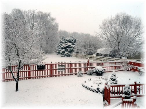 Morning snow 12/10/13