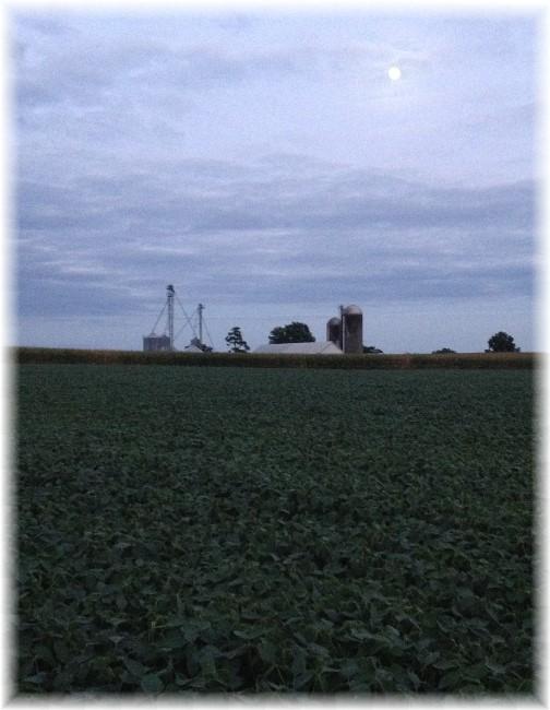 View at dusk 8/27/15