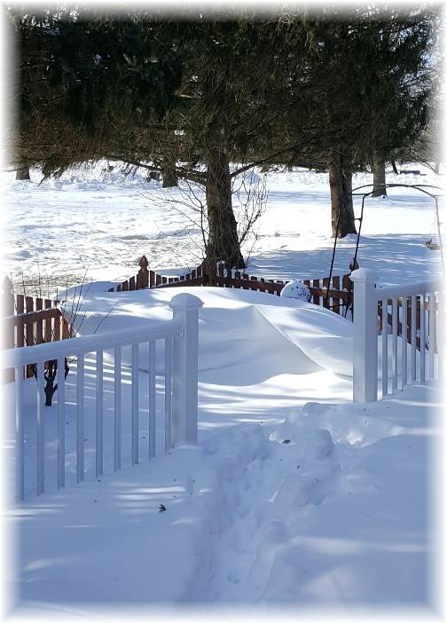 Snow drift 3/16/17