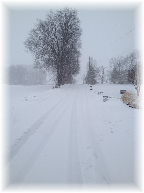 View up Kraybill Church Road during snow storm 3/5/15