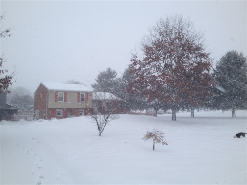 Home photo during snow storm 3/5/15