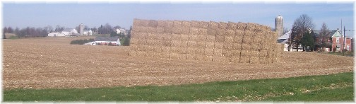 Fodder bales on Galen Martin's farm