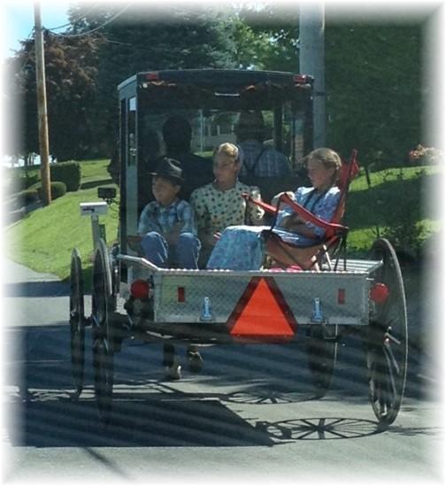 Mennonite children in horse-drawn pick-up 7/23/15