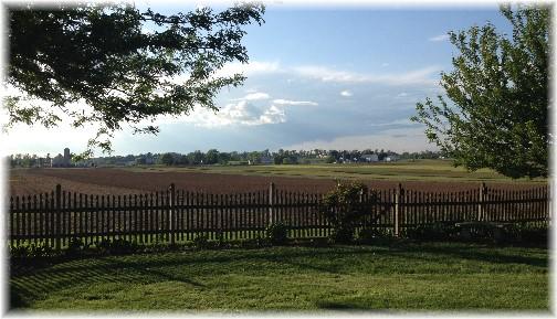 Miller backyard 5/24/14 (Click to enlarge)