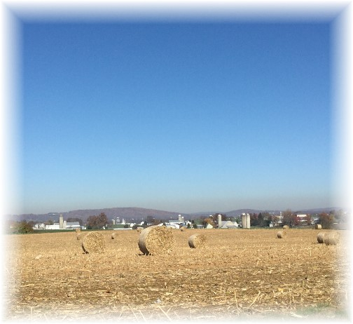 Lancaster hay bales 11/4/15