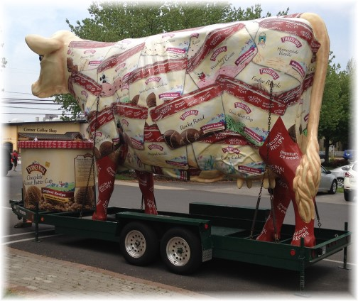 Turkey Hill traveling cow