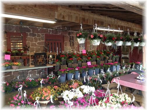 Village Farm Market 5/1/15