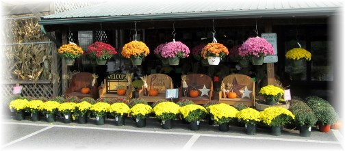 Mums at Village Farm Market 10/3/13