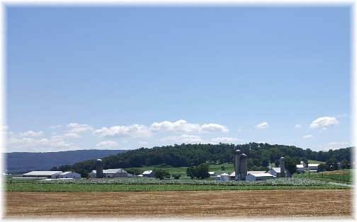 Lebanon Valley farm 7/9/17