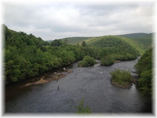 Lehigh River Gorge,, Poconos, PA 5/30/15
