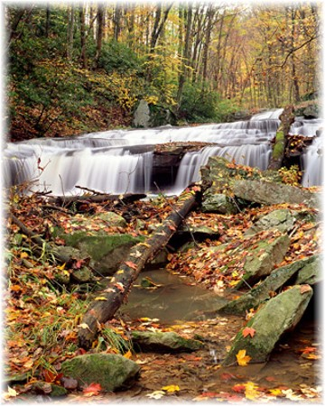 Ohiopyle Falls, western Pennsylvania (Photo by Howard Blichfeldt(