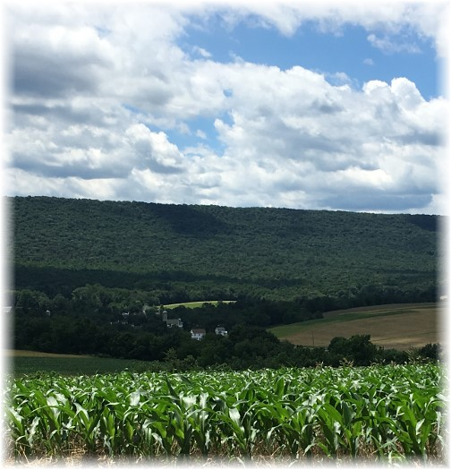 PA farm valley 6/20/17