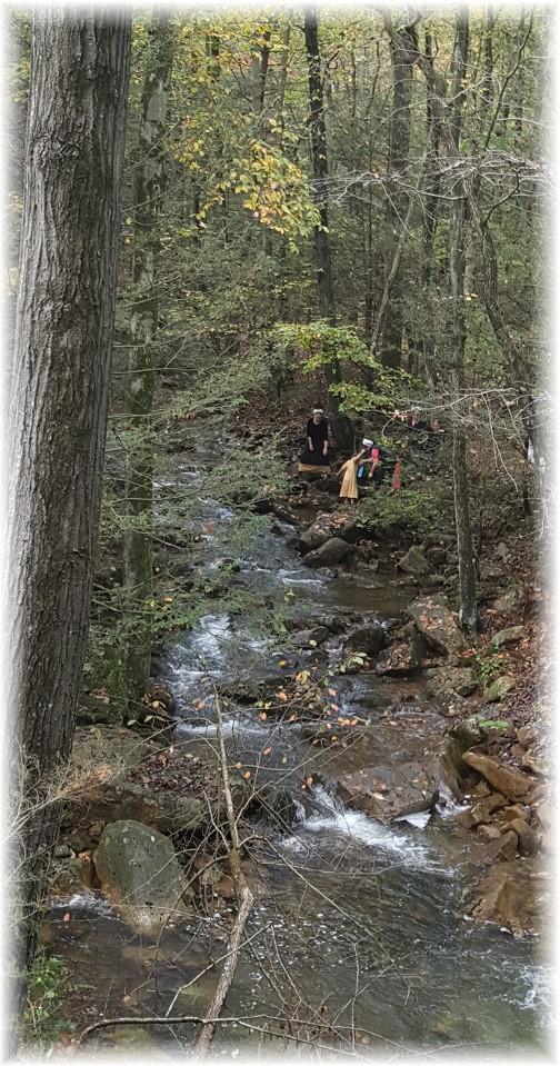 Stony Valley Creek along rail grade 10/15/17