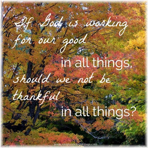 Thankfulness quote (photo by Sabra Penley (Click to enlarge)