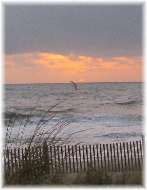 Sunrise Rehoboth Beach DE 10/14/13