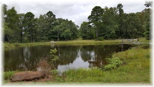 Arkansas mountain pond 8/7/17