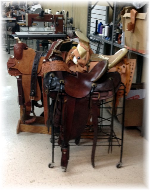 Saddle stands at leather shop in New Braunfels Texas 5/6/14
