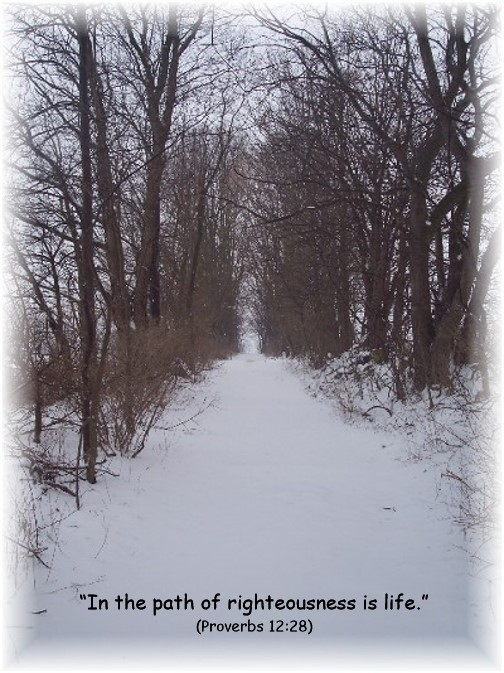 Snowy path with Proverbs 12:28