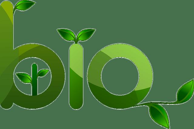 BIO-Green plants vector