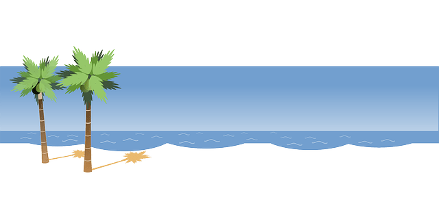 Beach -palm- ocean waves free vector