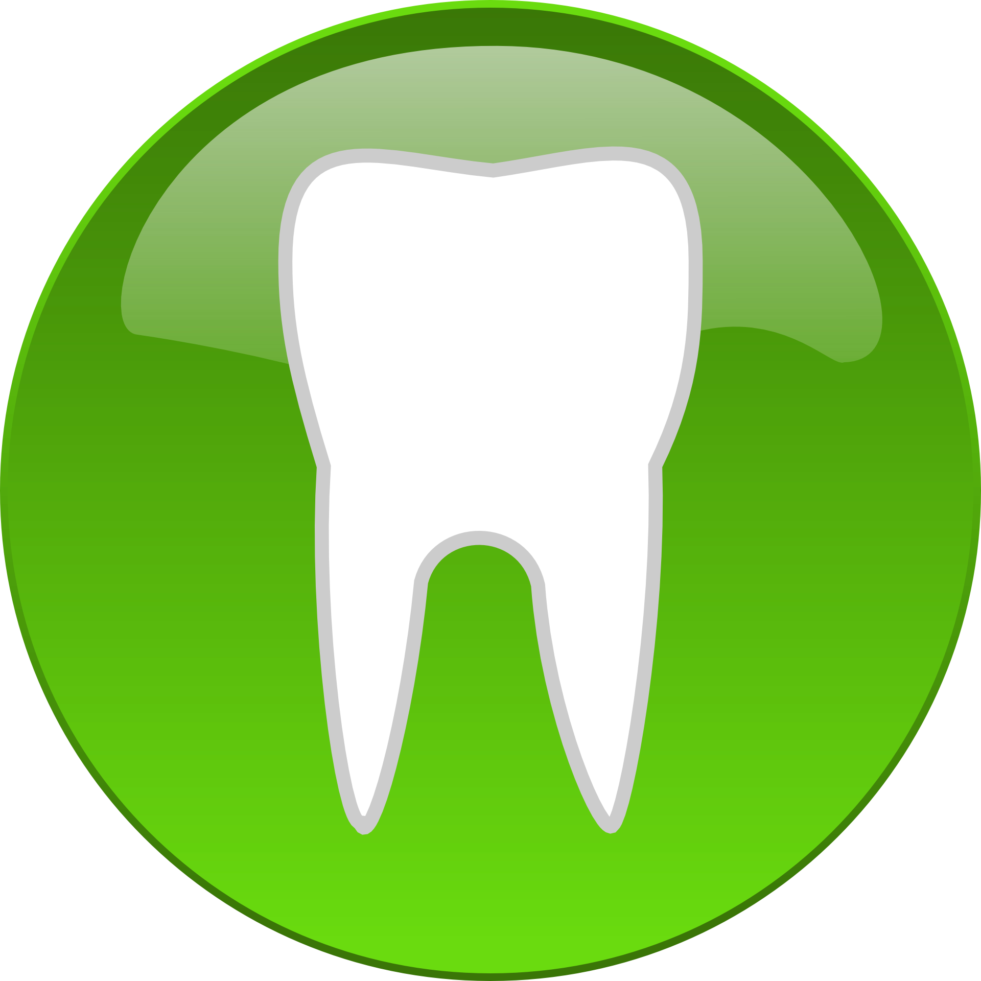Health teeth vector