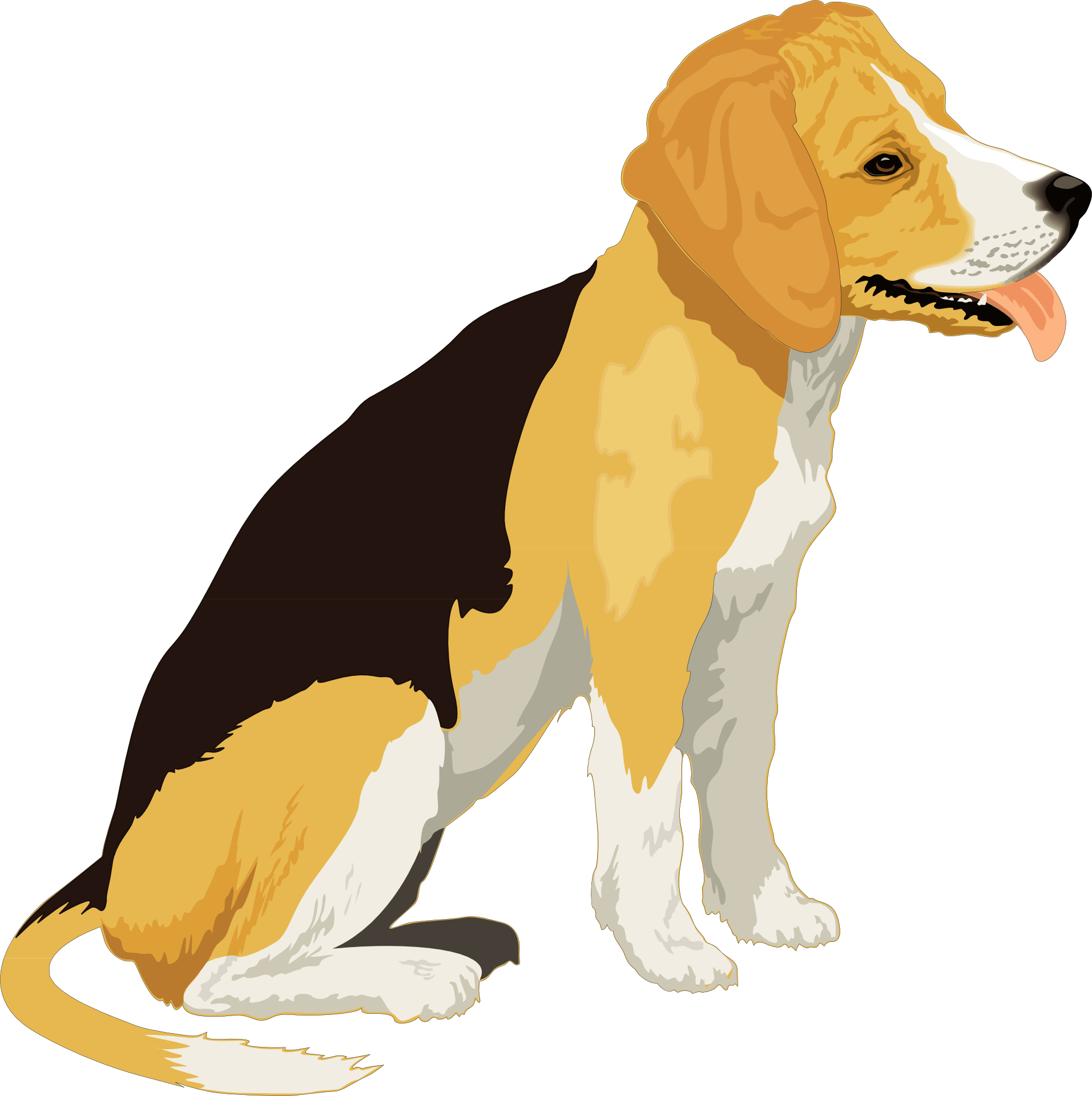 cartoon animal,cute pet dog vector