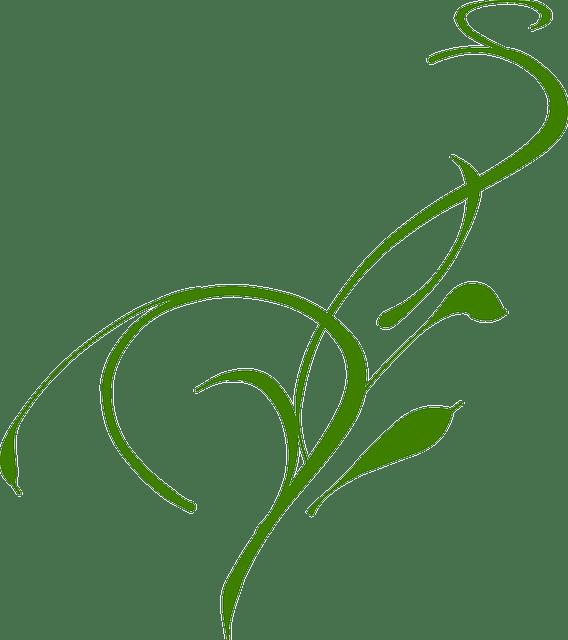 green grass blade vector
