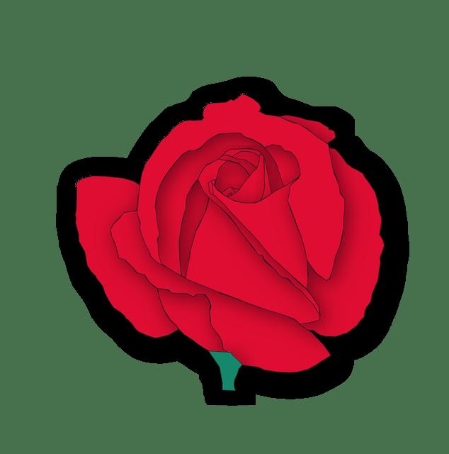 Cartoon red rose -flower vector