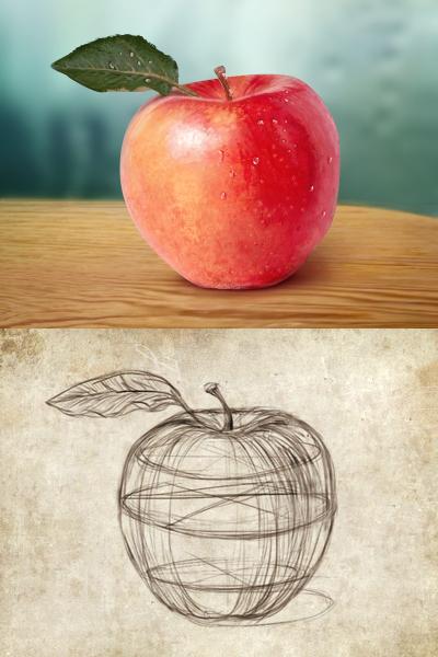 Fresh Fruit-Red Apple Free PSD - Sketch