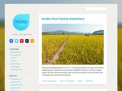Free PSD: Micro Tumblr Theme