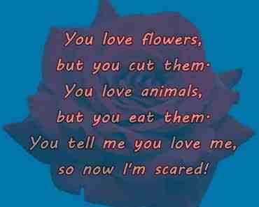 Funny Quotes How To Be Scary When You Tell Me You Love Me