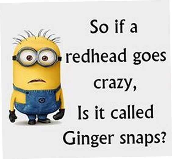 65 Best Funny Minion Quotes And hilarious pictures to laugh 1