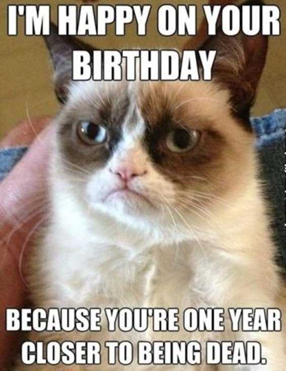 42 Happy Funny Birthday Images Funny Birthday Pictures 37