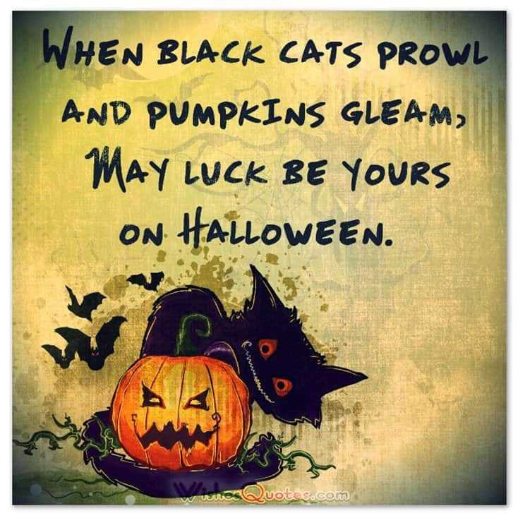 15 Funny Halloween Memes Printables for You 11