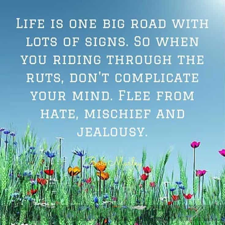 57 Beautiful Short Life Quotes Quotes on Life Lessons 6