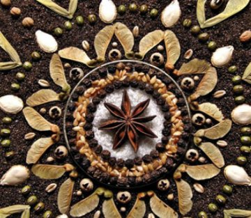 9 Inspiring Quotes About The Sacredness of Seeds