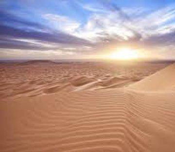 Desert Solitaire: A Love Letter to Solitude