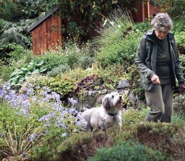 Drawn Into the Garden: An Artist's Journey